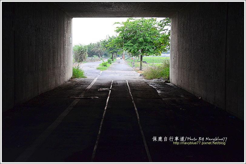 保鹿自行車道18.JPG