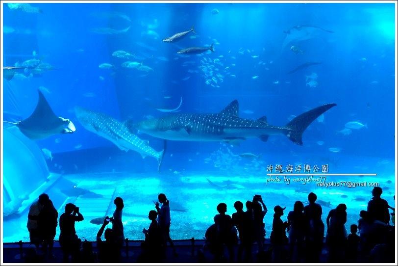 沖繩海洋博公園海灘01.JPG
