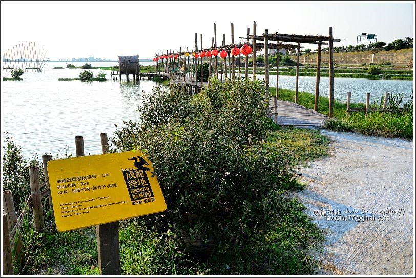 成龍濕地01.jpg