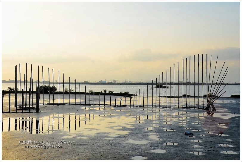 成龍濕地16.jpg