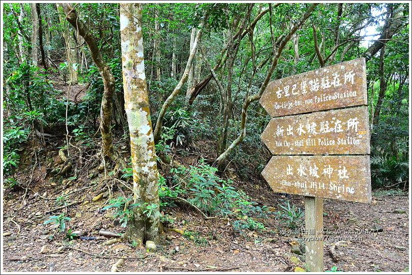 浸水營古道31.JPG