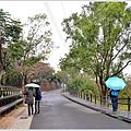 小崗山-崗山之眼天空廊道62.JPG
