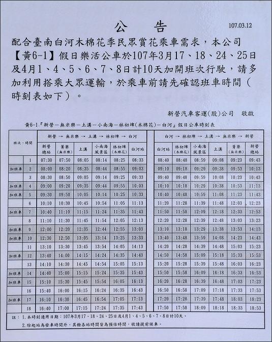 林初埤木棉花19.JPG