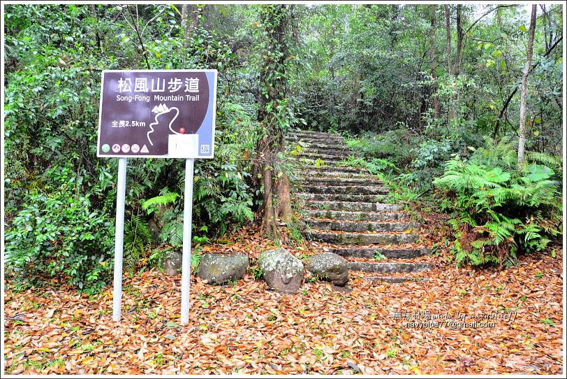 惠蓀林場環場森林步道O形03.JPG