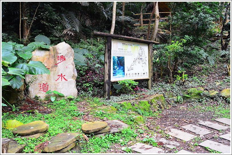 惠蓀林場環場森林步道O形45.JPG