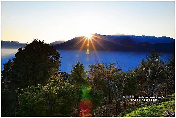 阿里山攝手旅行20.JPG