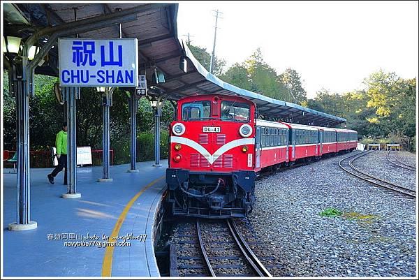 阿里山攝手旅行23.JPG
