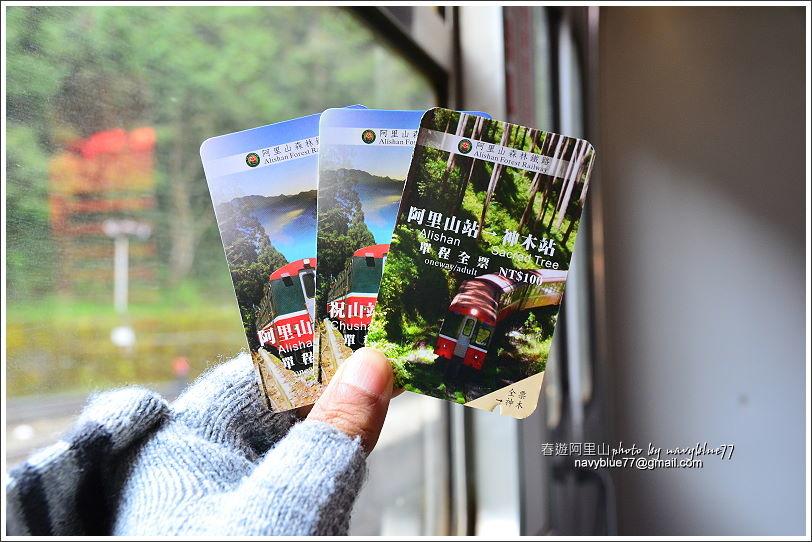 阿里山攝手旅行28.JPG