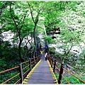 漢拏山觀音寺線29.JPG