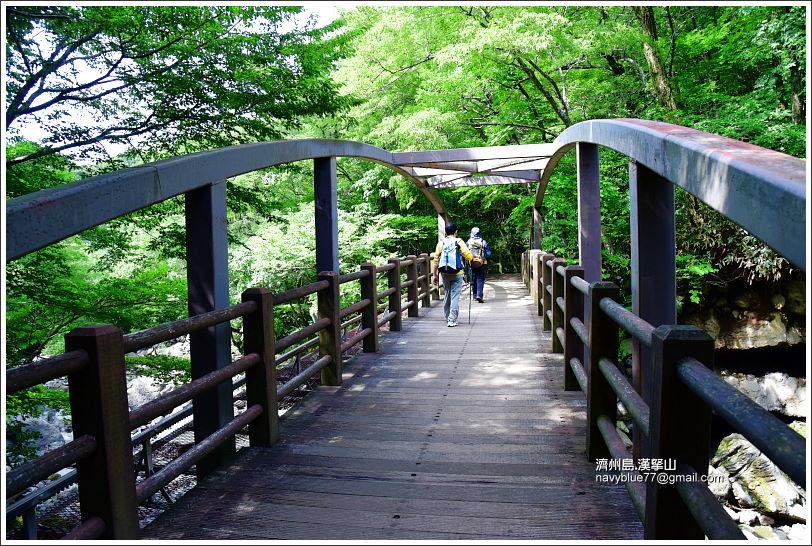 漢拏山觀音寺線30.JPG