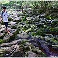 漢拏山觀音寺線37.JPG
