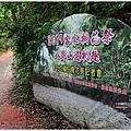 139桐花公路 (8).JPG