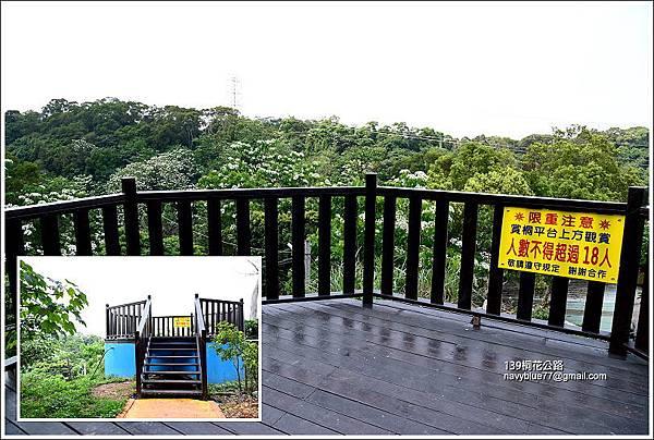 139桐花公路 (11).JPG