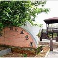 139桐花公路 (20).JPG
