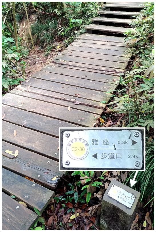 高雄柴山探洞趣 (34).JPG