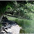 龜山島 (57).JPG
