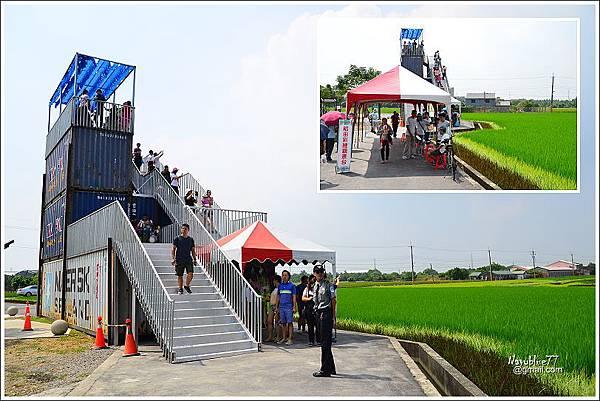 2019林鳳營台南好米季 (6).JPG