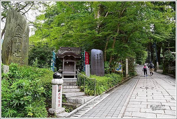 東京高尾山 (5).JPG