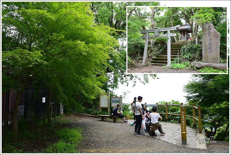 東京高尾山 (10).JPG