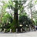 東京高尾山 (20).JPG