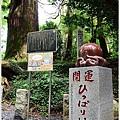 東京高尾山 (18).JPG