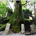 東京高尾山 (21).JPG