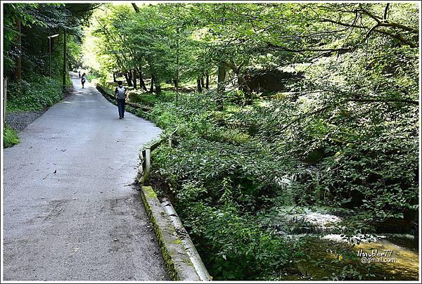 東京高尾山 (53).JPG