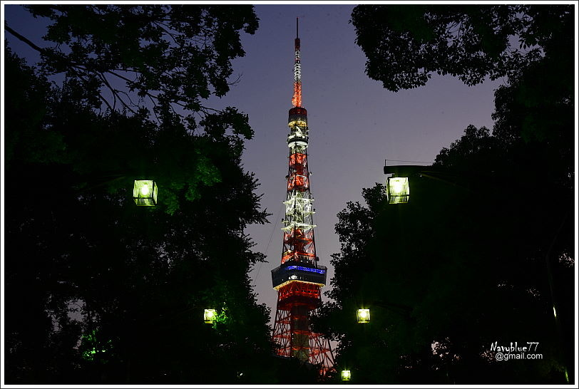 東京鐵塔 (3).JPG
