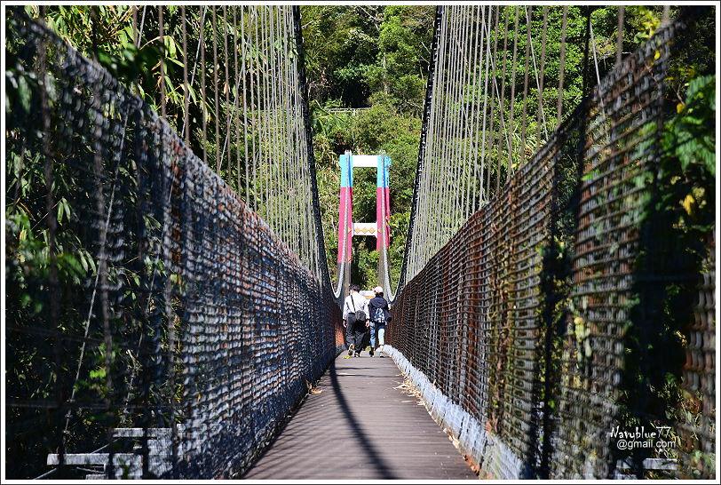 特富野步道 (6).JPG