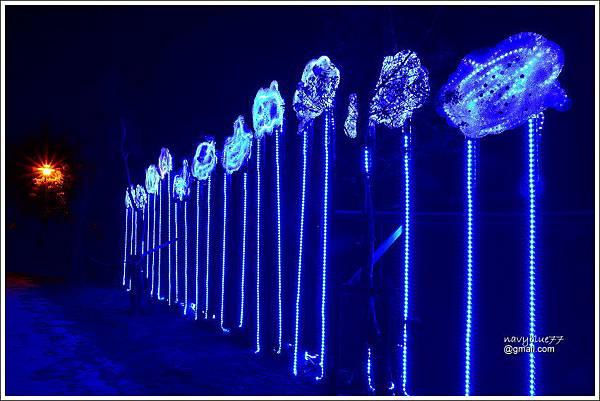 2020鹽水燈節II (4).JPG