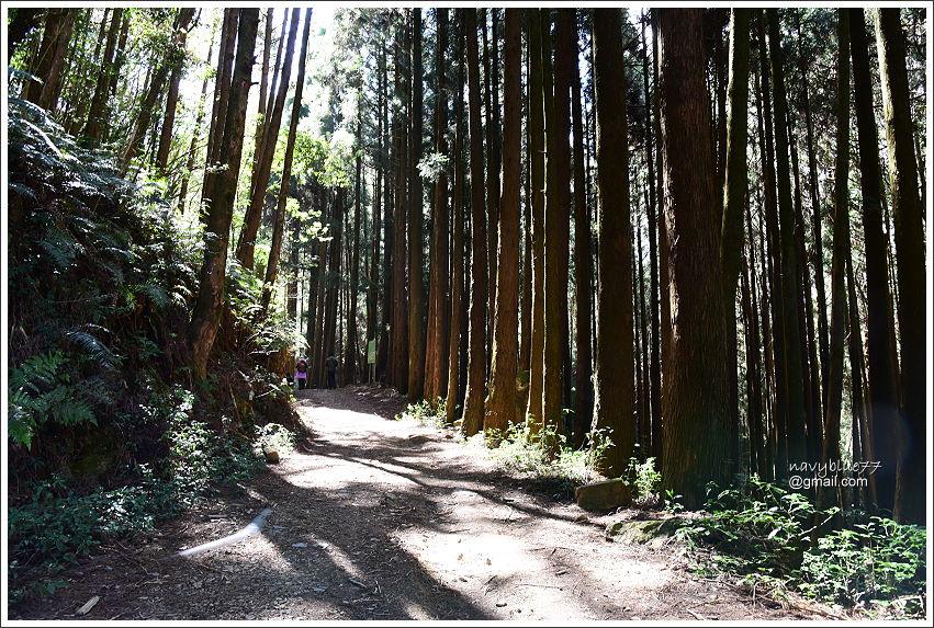 石山引水道 (2).JPG