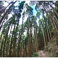 石山引水道 (30).JPG