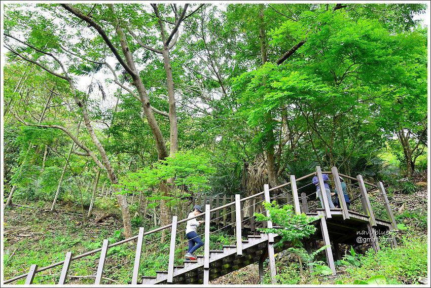 金獅村步道 (12).JPG