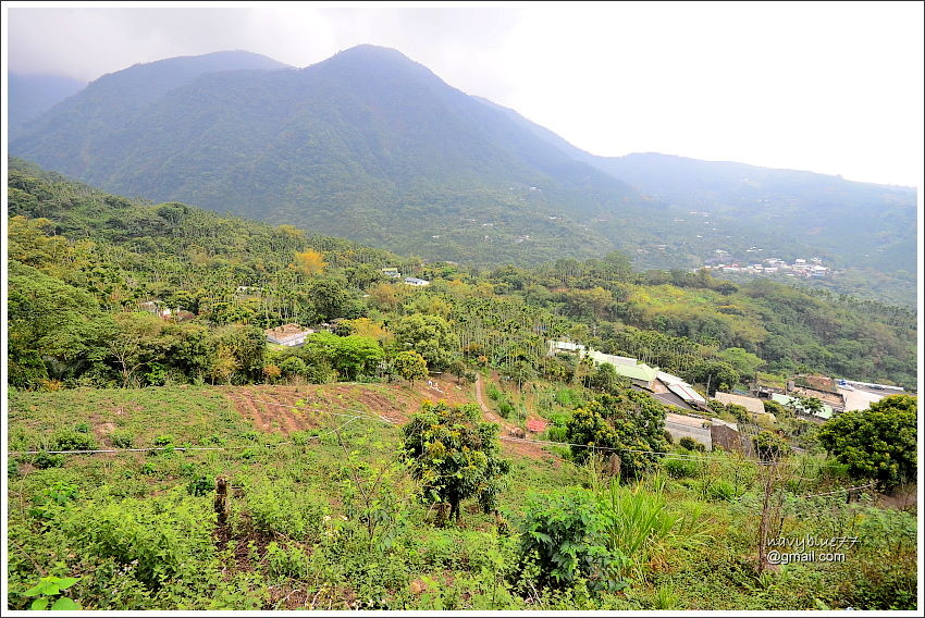 金獅村步道 (18).JPG