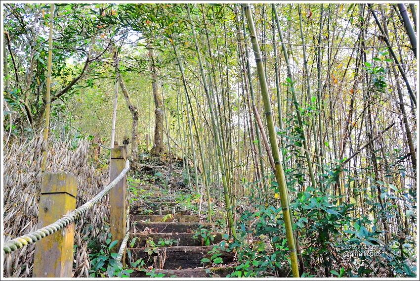 金獅村步道 (36).JPG