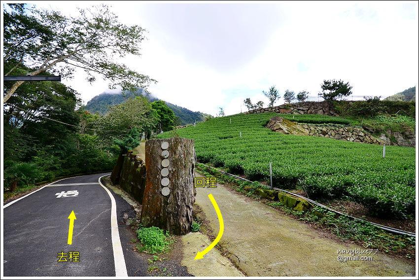 花石溪步道 (25).JPG