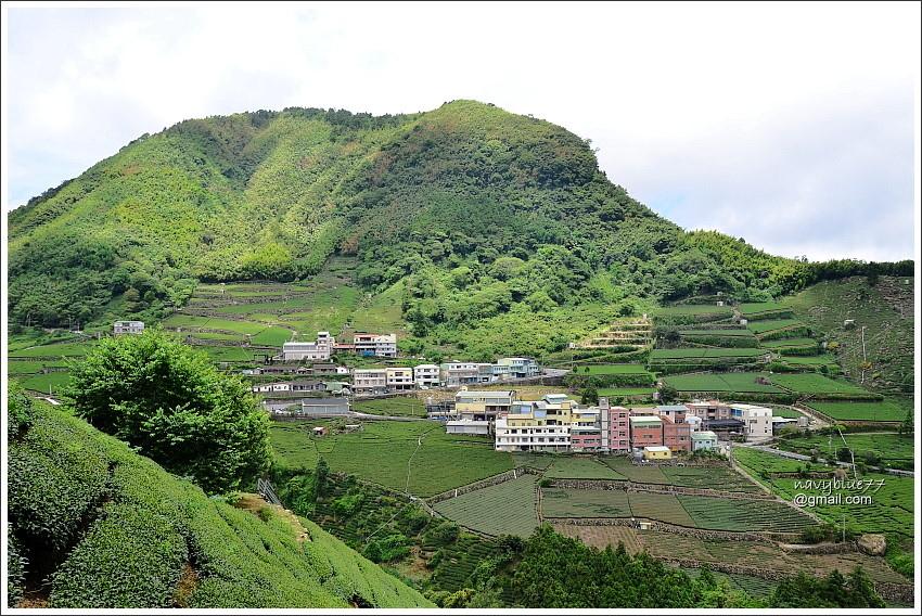 花石溪步道 (27).JPG