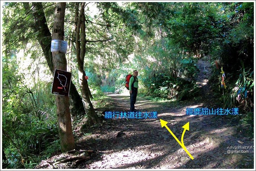 杉林溪-水漾森林 (7).JPG