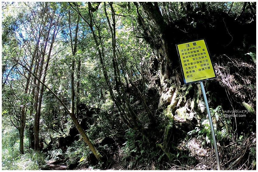 杉林溪-水漾森林 (12).jpg
