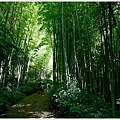 樟樹湖大象山 (1).JPG