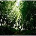 樟樹湖大象山 (2).JPG