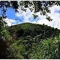 樟樹湖大象山 (20).JPG