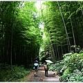 樟樹湖大象山 (21).JPG