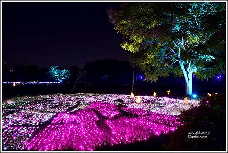 北香湖公園 (9).JPG