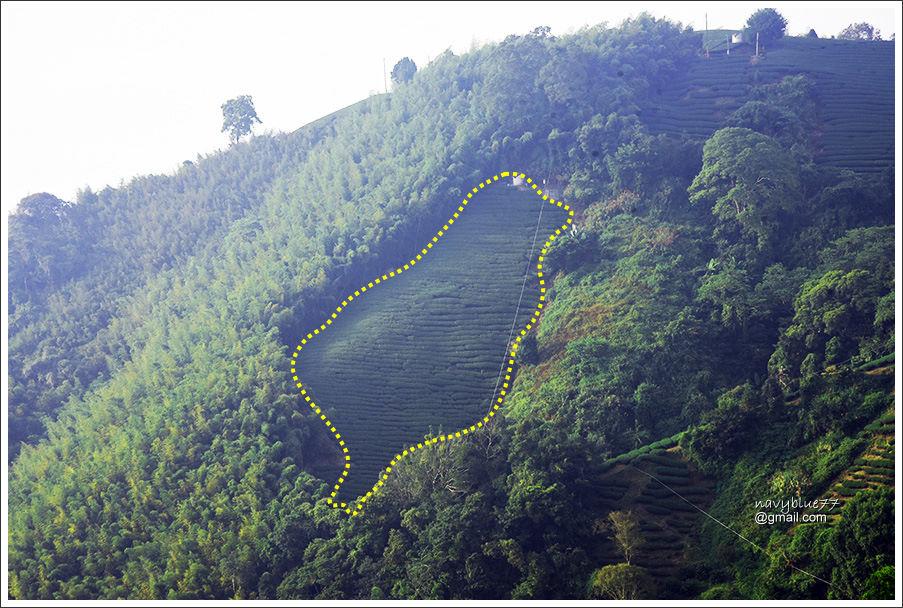 坔埔坑海鼠山 (29).jpg