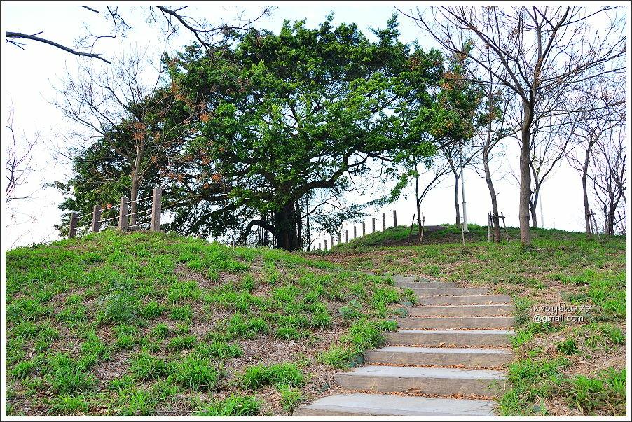 布袋鎮前東港山 (9).JPG