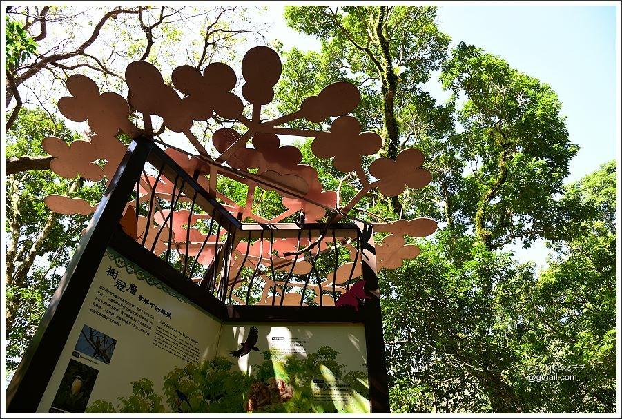 雙流森林遊樂區 (8).JPG