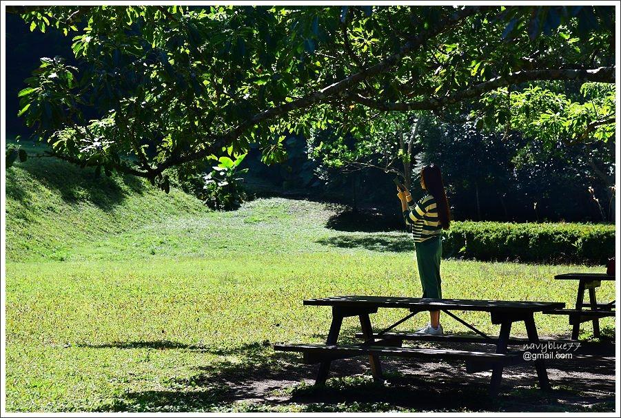 雙流森林遊樂區 (2).JPG
