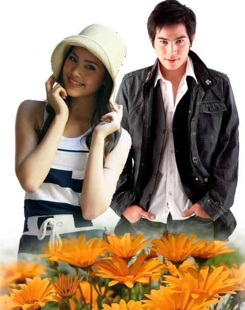 《Dao Rueang金盞花》