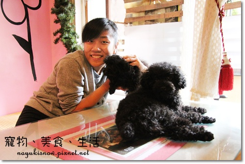 狗狗很可愛